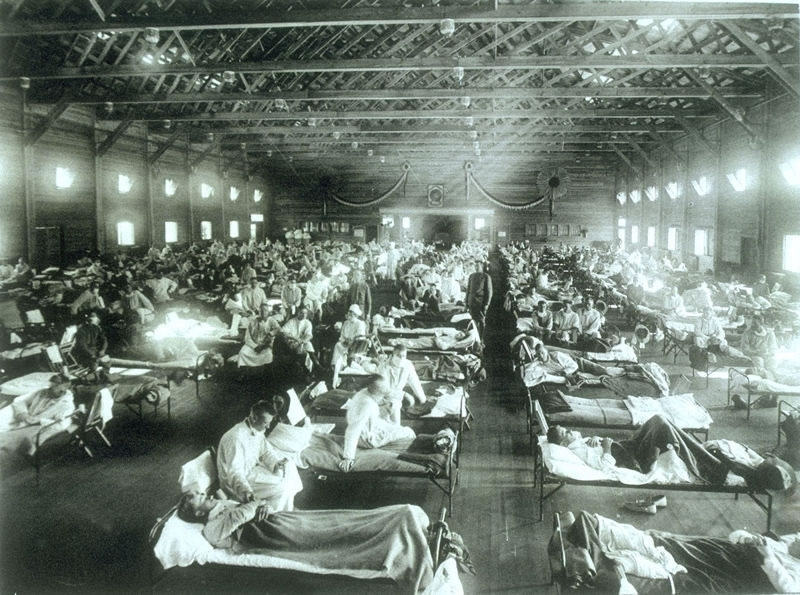 8 Things you thought you knew about theflu